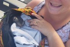 Deborah and a homeless kitten downtown.